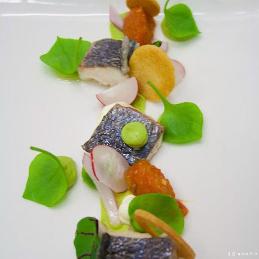 Dorade royale, avocado, tomatensalsa