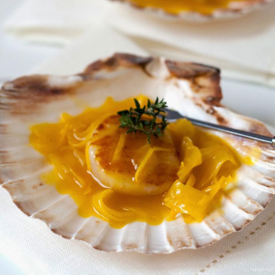 Sint-Jakobsnoten met citroen-saffraansaus – Knack Weekend #2