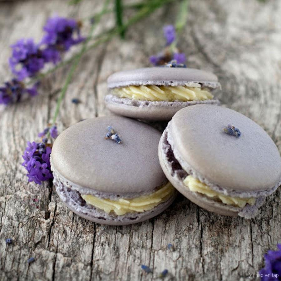 Lavendel macarons met witte chocolade