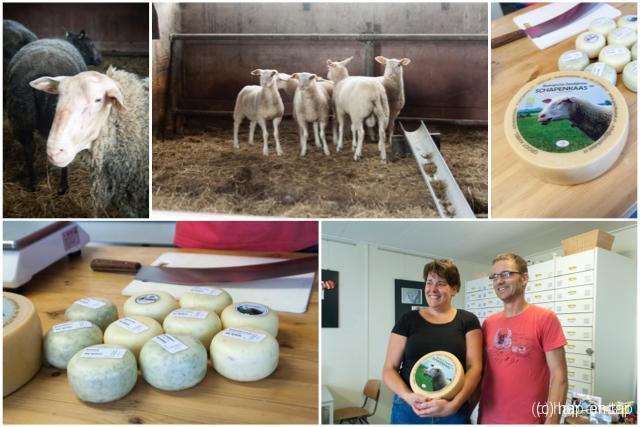 Hap & Tap op stap: lekker Leeuwarden